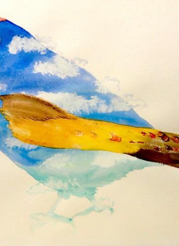 Gabor Breznay Skybird aquarelle sur papier 50x65cm 2014-BD