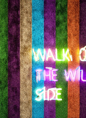 oeuvre 7 walk on the wild side Caroline Baup 3bd